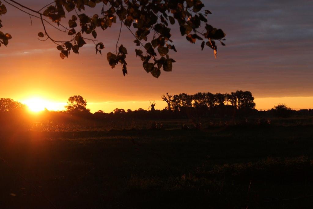 Sonnenuntergang in Ditzum