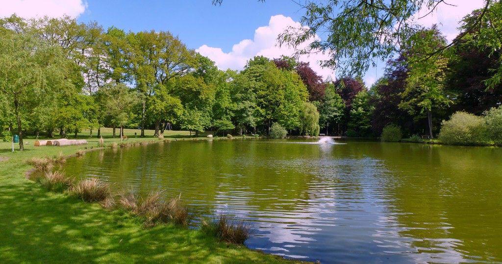 Teich im Julianenpark