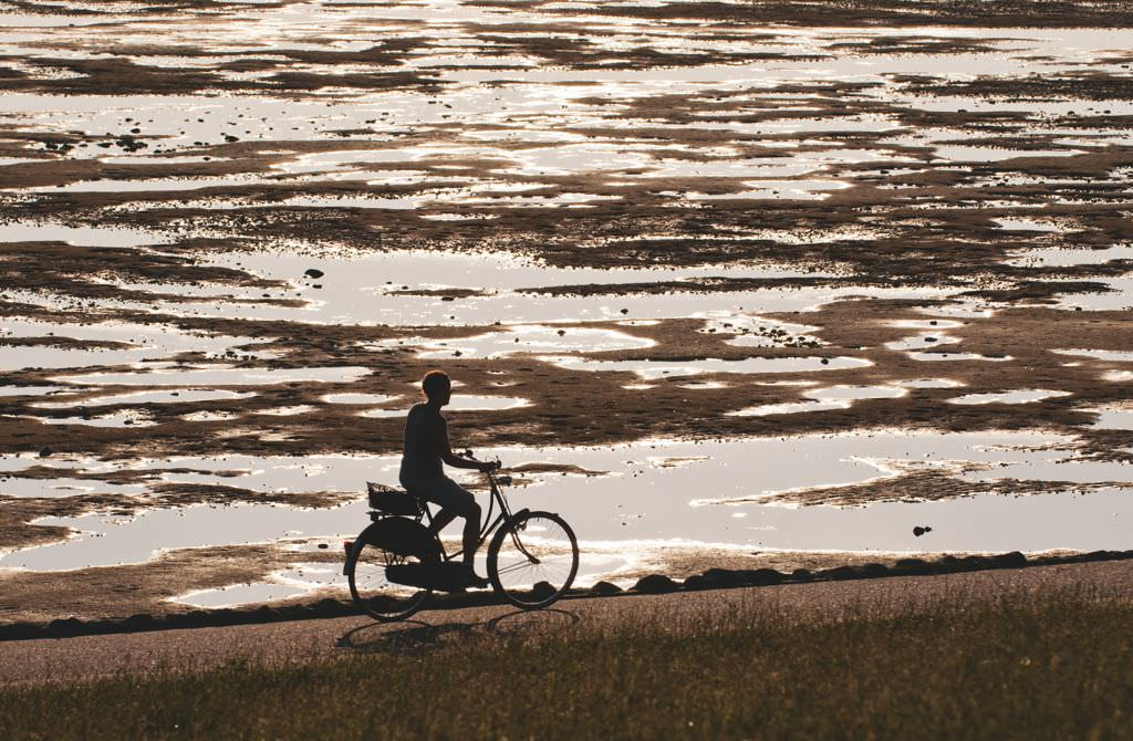 Radfahren am Wattenmeer